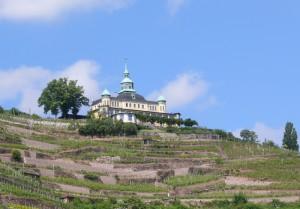 radebeul spitzhaus mit weinbergen - foto: die-infoseiten.de